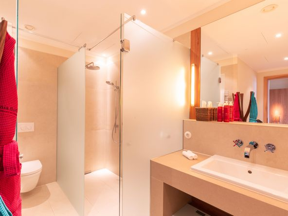 Shower with frosted glass panes and washbasin with various washing utensils